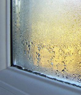 10 litres d'humidité par jour